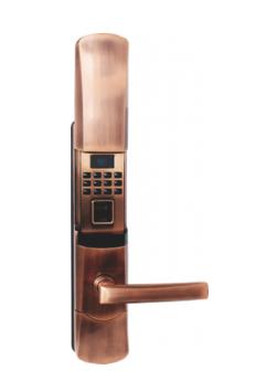 VN-K6020-JPVDD-125x300-1